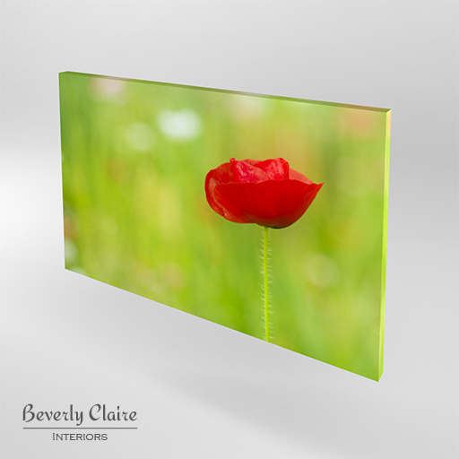 Canvas print of a bright red poppy by Beverly Claire Interiors